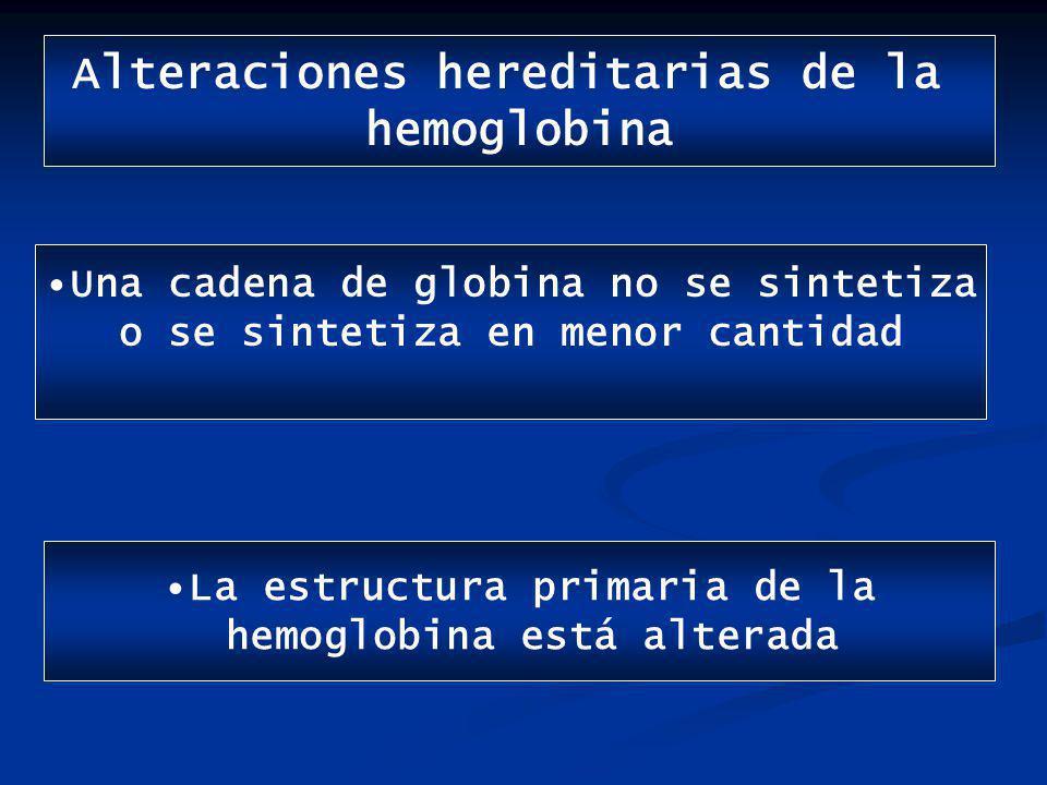 Alteraciones hereditarias de la hemoglobina Una cadena de globina no se sintetiza o se sintetiza en menor cantidad La estructura primaria de la hemoglobina está alterada