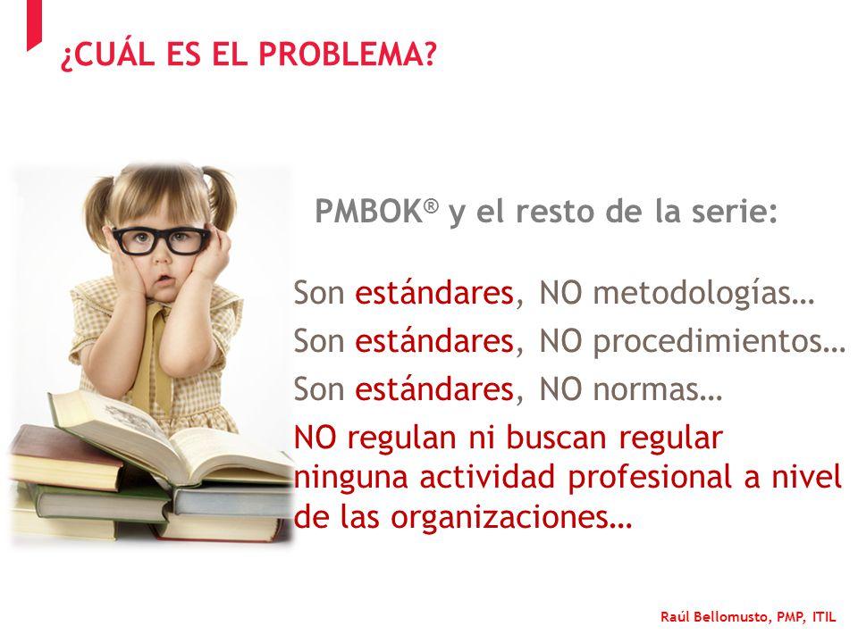 Raúl Bellomusto, PMP, ITIL Son estándares, NO metodologías… Son estándares, NO procedimientos… Son estándares, NO normas… NO regulan ni buscan regular
