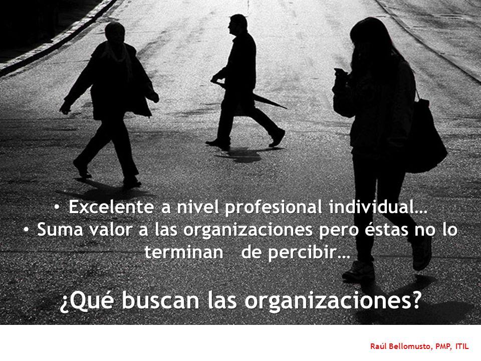 Raúl Bellomusto, PMP, ITIL Excelente a nivel profesional individual… Excelente a nivel profesional individual… Suma valor a las organizaciones pero és