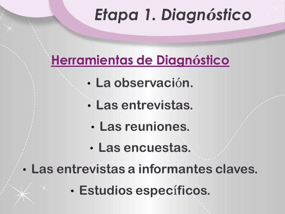 Etapa 1.Diagn ó stico Herramientas de Diagn ó stico La observaci ó n.