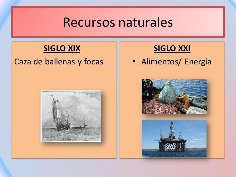 Recursos naturales SIGLO XIX Caza de ballenas y focas SIGLO XIX Caza de ballenas y focas SIGLO XXI Alimentos/ Energía SIGLO XXI Alimentos/ Energía