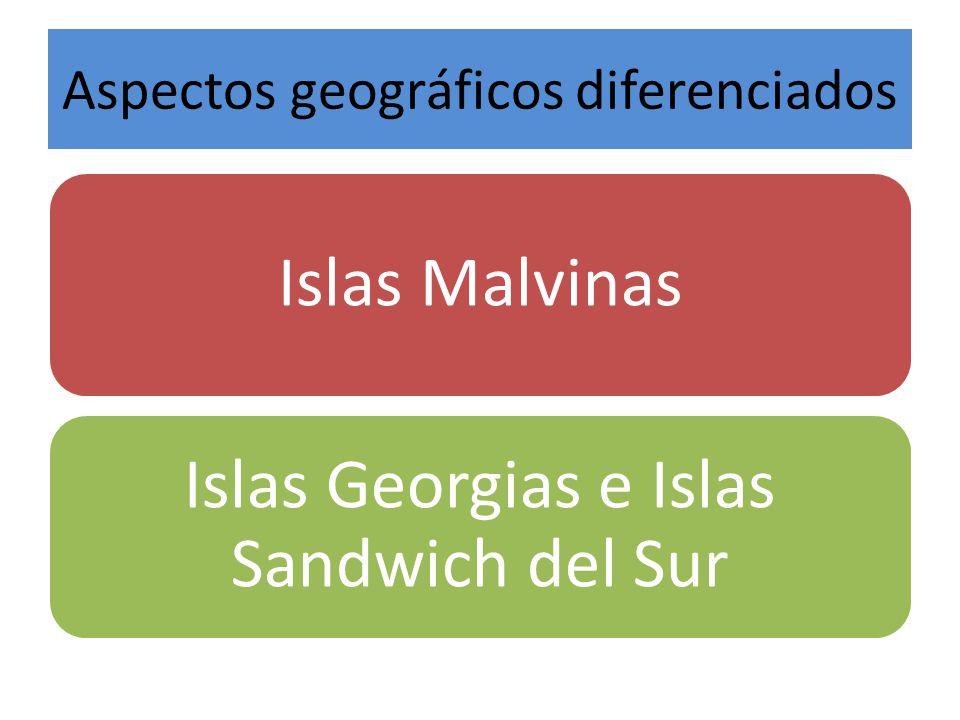 Aspectos geográficos diferenciados Islas Malvinas Islas Georgias e Islas Sandwich del Sur