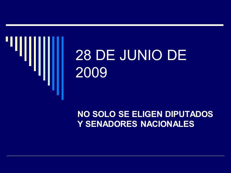 28 DE JUNIO DE 2009 NO SOLO SE ELIGEN DIPUTADOS Y SENADORES NACIONALES