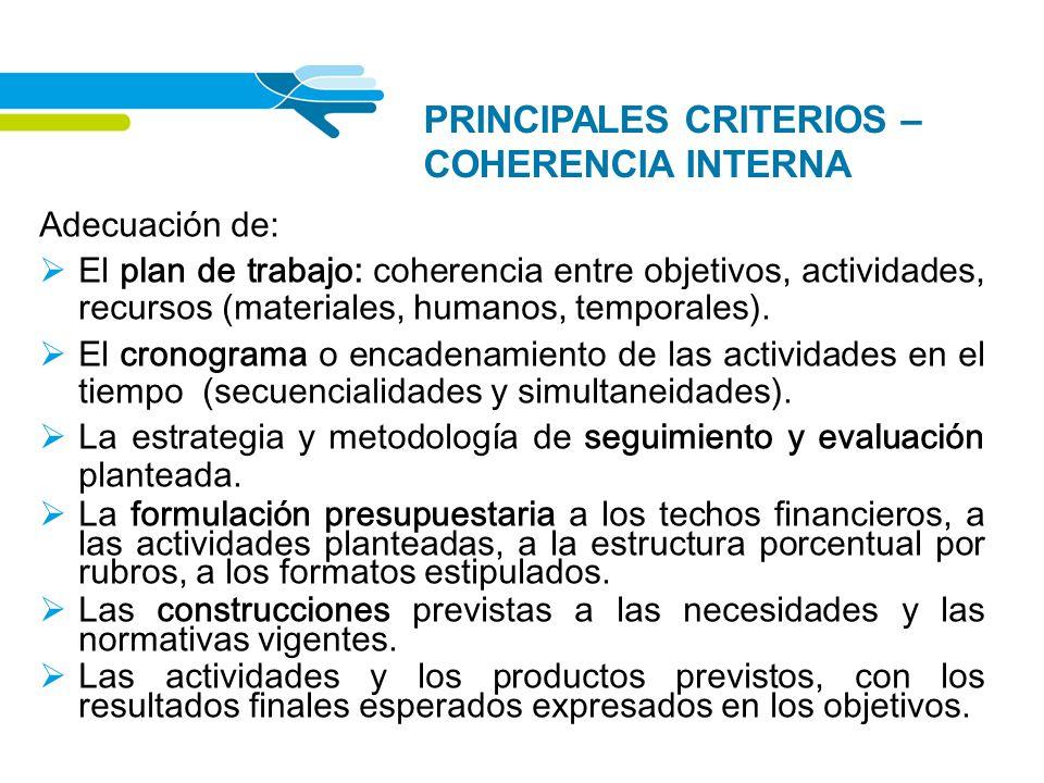 PRINCIPALES CRITERIOS – COHERENCIA INTERNA Adecuación de: El plan de trabajo: coherencia entre objetivos, actividades, recursos (materiales, humanos,