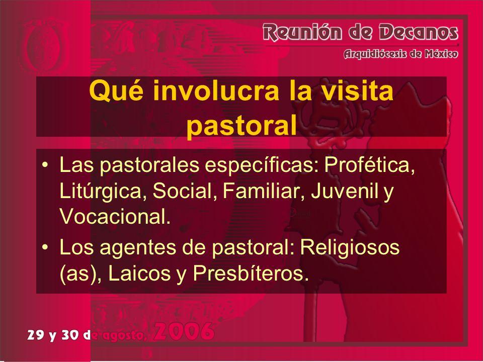 Qué involucra la visita pastoral Las pastorales específicas: Profética, Litúrgica, Social, Familiar, Juvenil y Vocacional. Los agentes de pastoral: Re