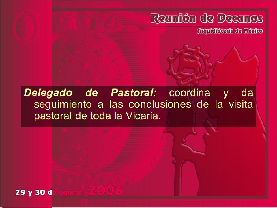Delegado de Pastoral: coordina y da seguimiento a las conclusiones de la visita pastoral de toda la Vicaría.