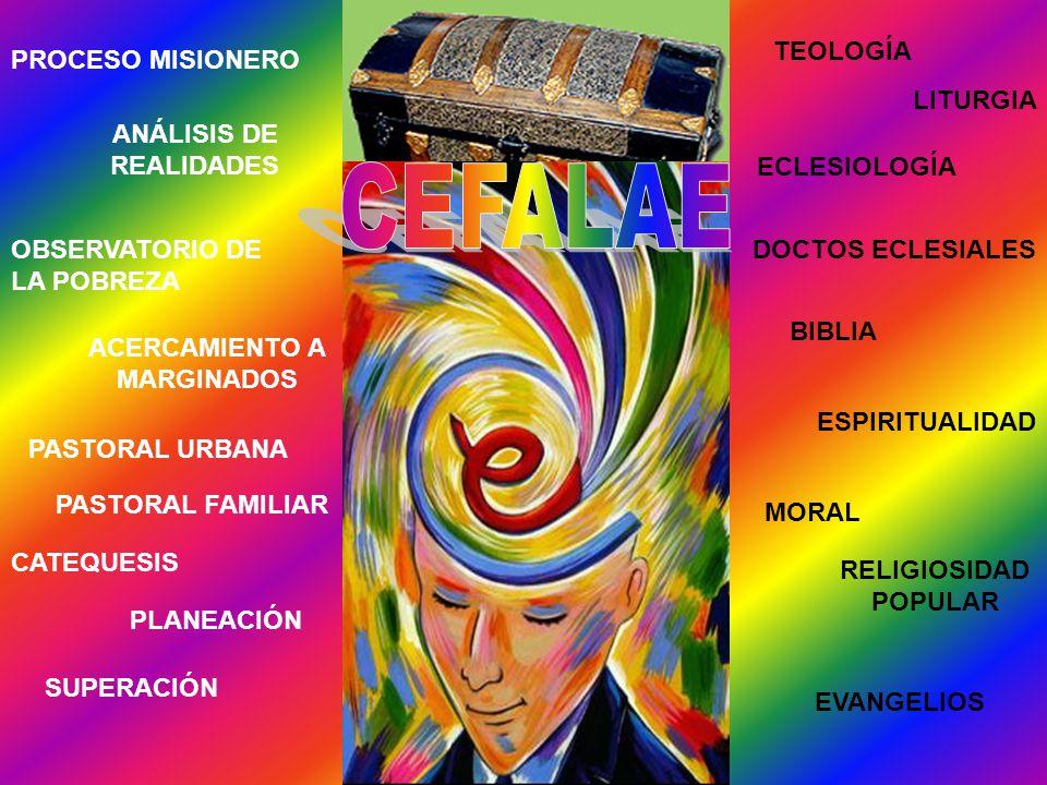 PROCESO MISIONERO ANÁLISIS DE REALIDADES OBSERVATORIO DE LA POBREZA ACERCAMIENTO A MARGINADOS PASTORAL URBANA PASTORAL FAMILIAR CATEQUESIS PLANEACIÓN