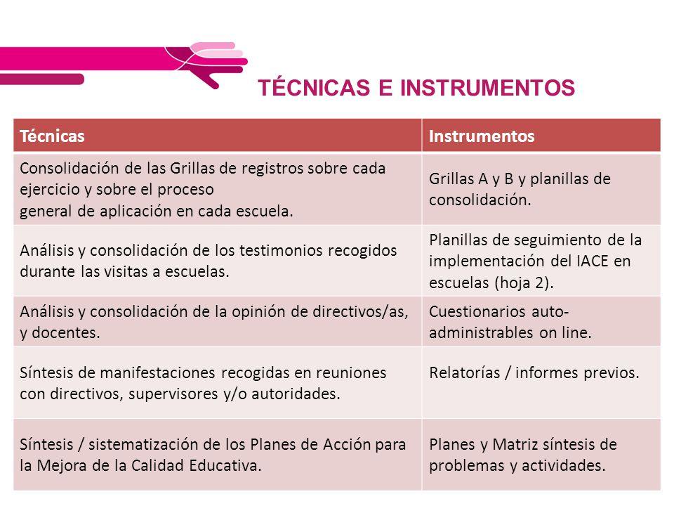 TÉCNICAS E INSTRUMENTOS TécnicasInstrumentos Consolidación de las Grillas de registros sobre cada ejercicio y sobre el proceso general de aplicación e