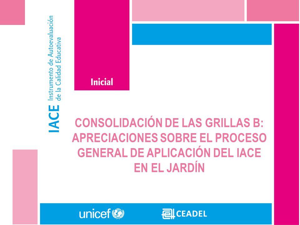 CONSOLIDACIÓN DE LAS GRILLAS B: APRECIACIONES SOBRE EL PROCESO GENERAL DE APLICACIÓN DEL IACE EN EL JARDÍN