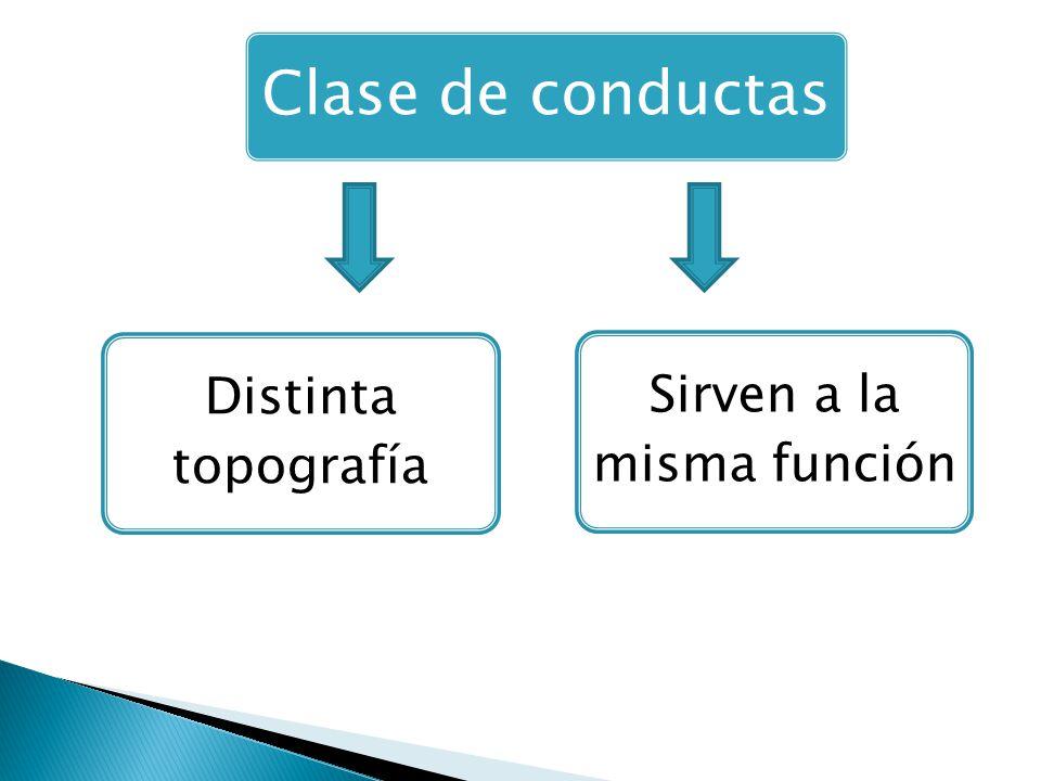 Clase de conductas Distinta topografía Sirven a la misma función