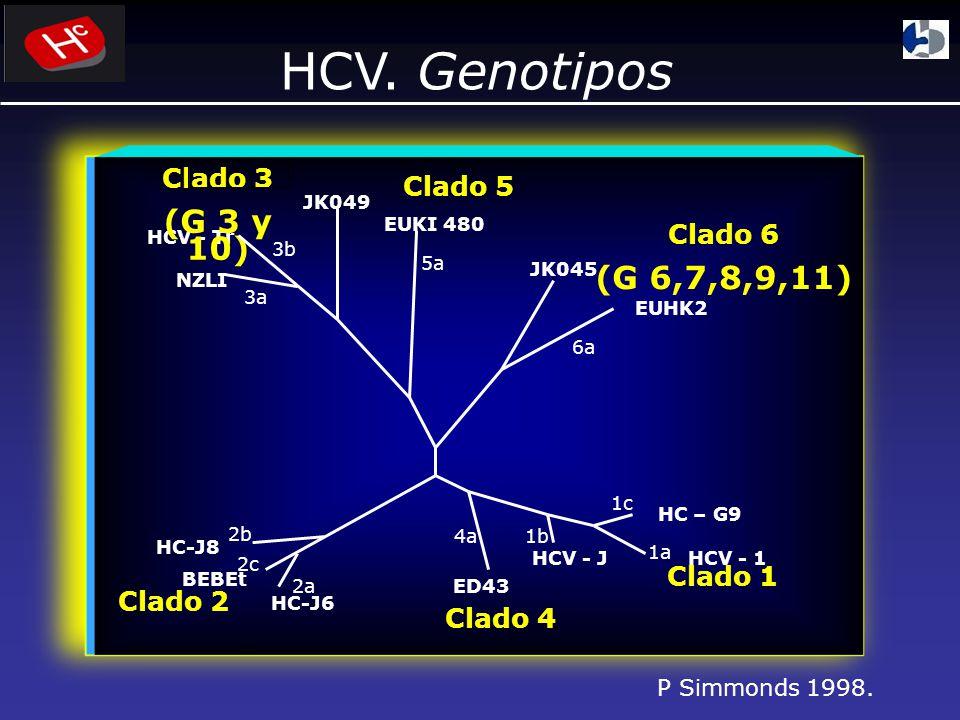 HCV.Genotipos P Simmonds 1998.