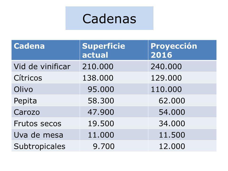 Cadenas CadenaSuperficie actual Proyección 2016 Vid de vinificar210.000240.000 Cítricos138.000129.000 Olivo 95.000110.000 Pepita 58.300 62.000 Carozo