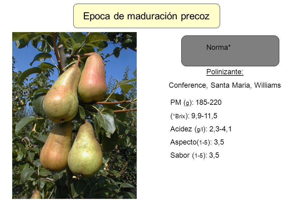 Epoca de maduración precoz Norma* Polinizante: Conference, Santa Maria, Williams PM ( g ): 185-220 ( °Brix ): 9,9-11,5 Acidez ( g/l ): 2,3-4,1 Aspecto