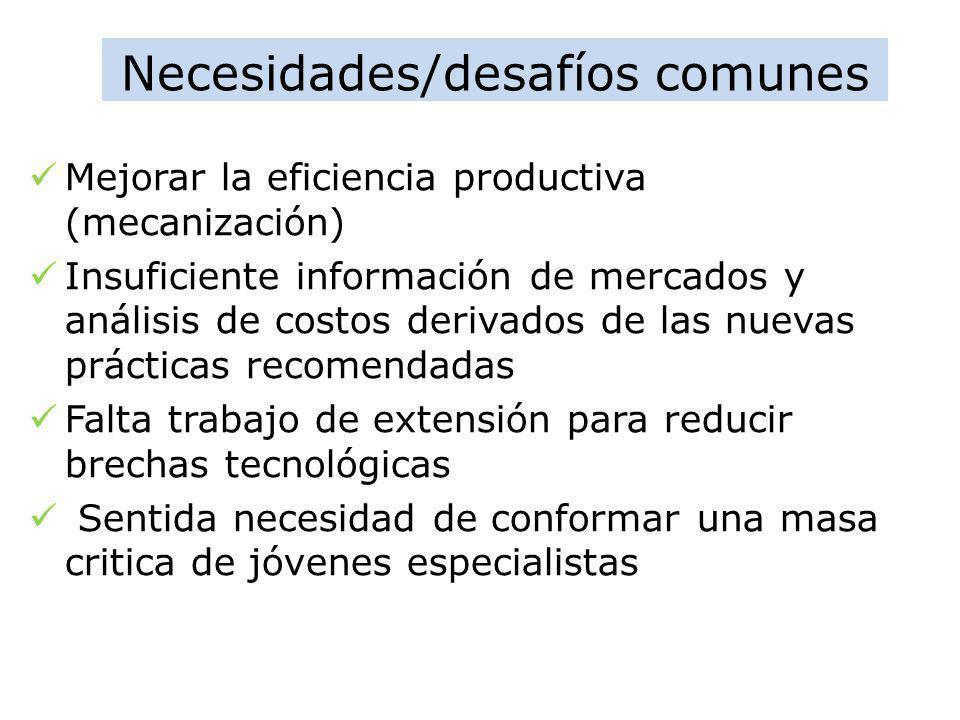 Necesidades/desafíos comunes Mejorar la eficiencia productiva (mecanización) Insuficiente información de mercados y análisis de costos derivados de la