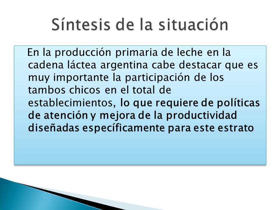 En la producción primaria de leche en la cadena láctea argentina cabe destacar que es muy importante la participación de los tambos chicos en el total