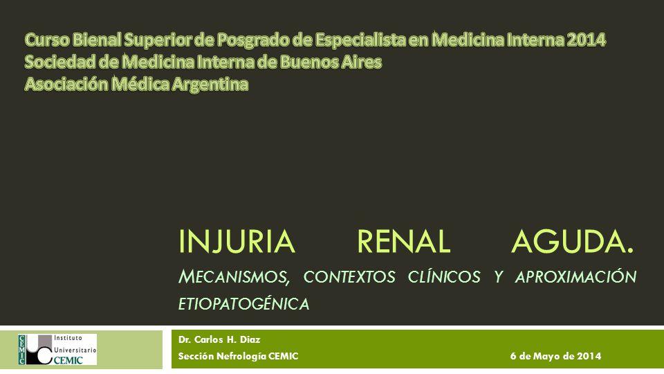 Escenarios en AKI Pacientes ambulatorios Hipovolemia Fármacos Obstrucción sobre daño crónico previo Pacientes internados Isquemia Fármacos Medio de contraste I.V.