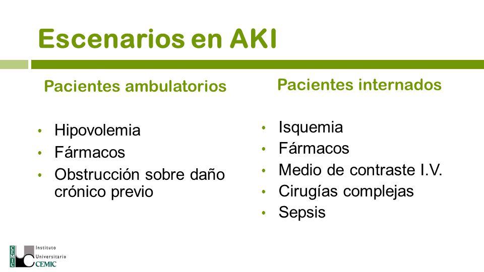 Escenarios en AKI Pacientes ambulatorios Hipovolemia Fármacos Obstrucción sobre daño crónico previo Pacientes internados Isquemia Fármacos Medio de co