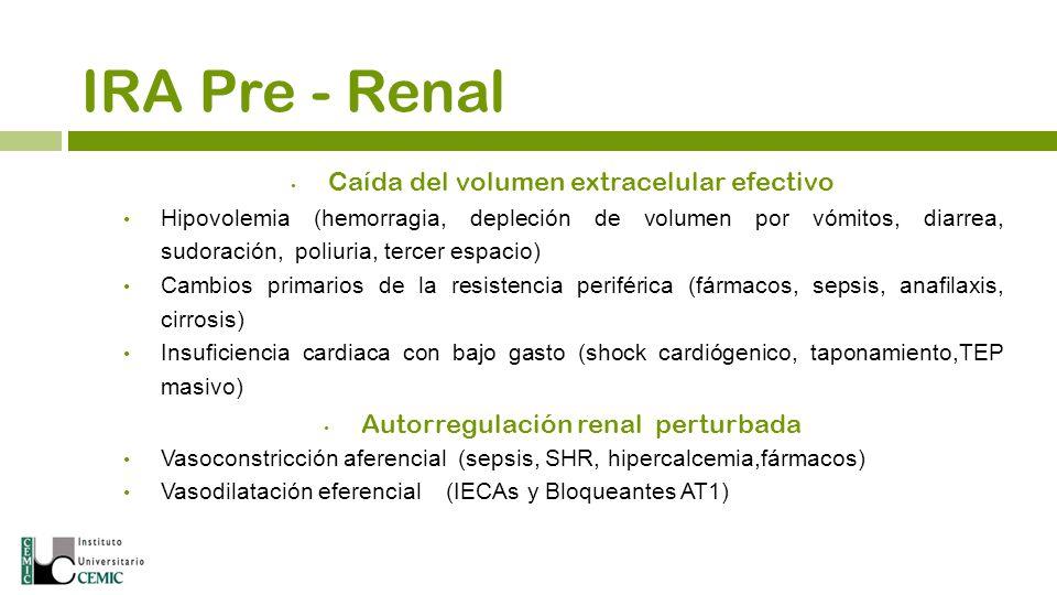 IRA Pre - Renal Caída del volumen extracelular efectivo Hipovolemia (hemorragia, depleción de volumen por vómitos, diarrea, sudoración, poliuria, terc