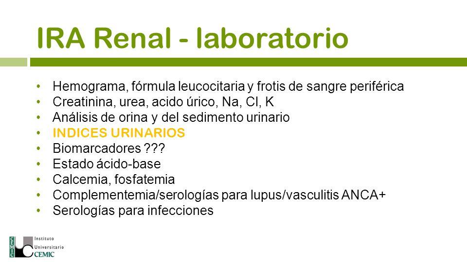 Hemograma, fórmula leucocitaria y frotis de sangre periférica Creatinina, urea, acido úrico, Na, Cl, K Análisis de orina y del sedimento urinario INDI