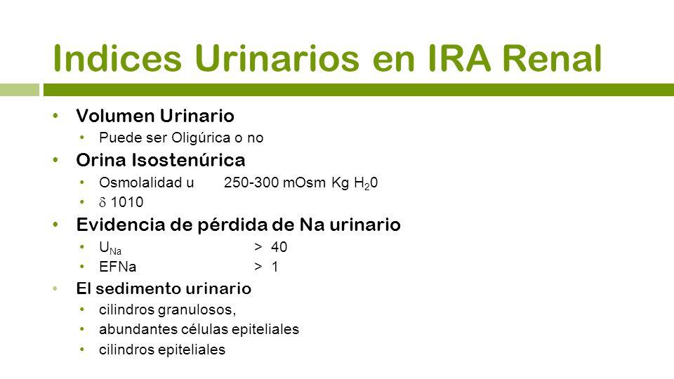 Volumen Urinario Puede ser Oligúrica o no Orina Isostenúrica Osmolalidad u 250-300 mOsm Kg H 2 0 1010 Evidencia de pérdida de Na urinario U Na > 40 EF