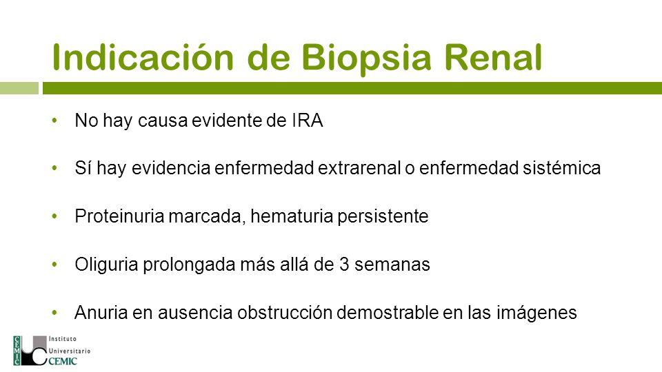 No hay causa evidente de IRA Sí hay evidencia enfermedad extrarenal o enfermedad sistémica Proteinuria marcada, hematuria persistente Oliguria prolong