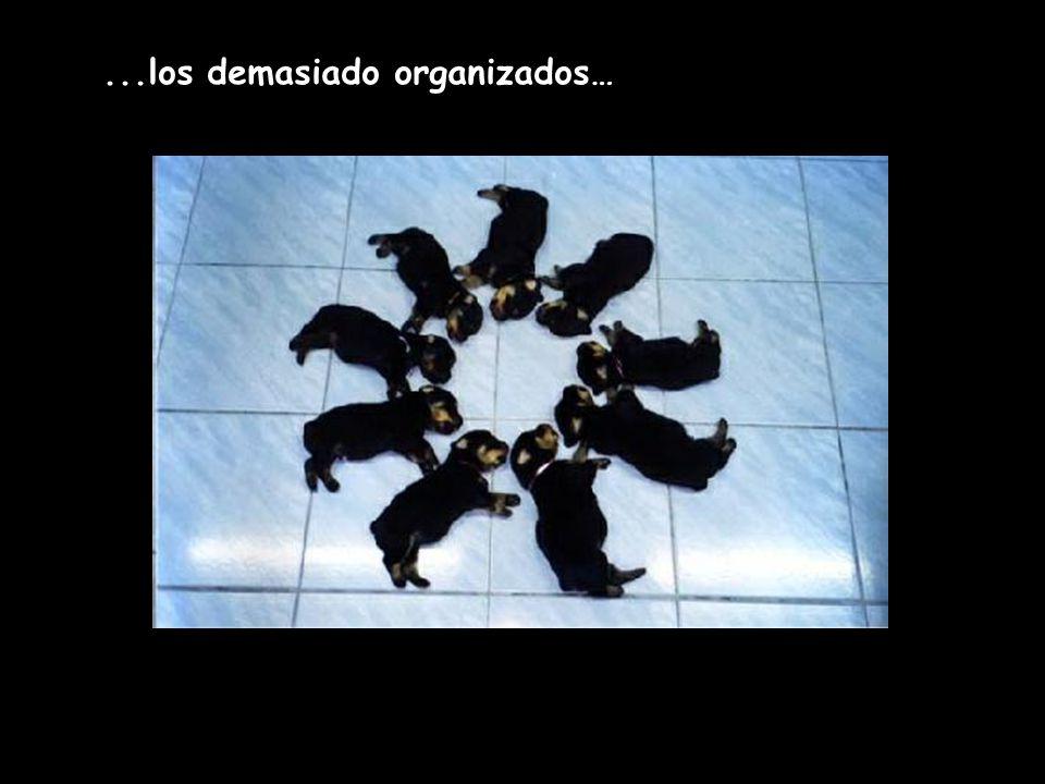 ...los demasiado organizados…