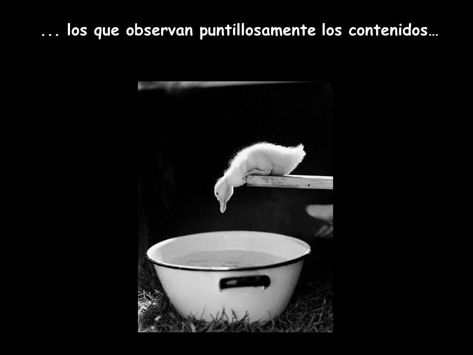 ... los que observan puntillosamente los contenidos…