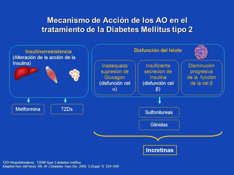 Mecanismo de Acción de los AO en el tratamiento de la Diabetes Mellitus tipo 2 TZD=thiazolidinedione; T2DM=type 2 diabetes mellitus Adapted from DeFro