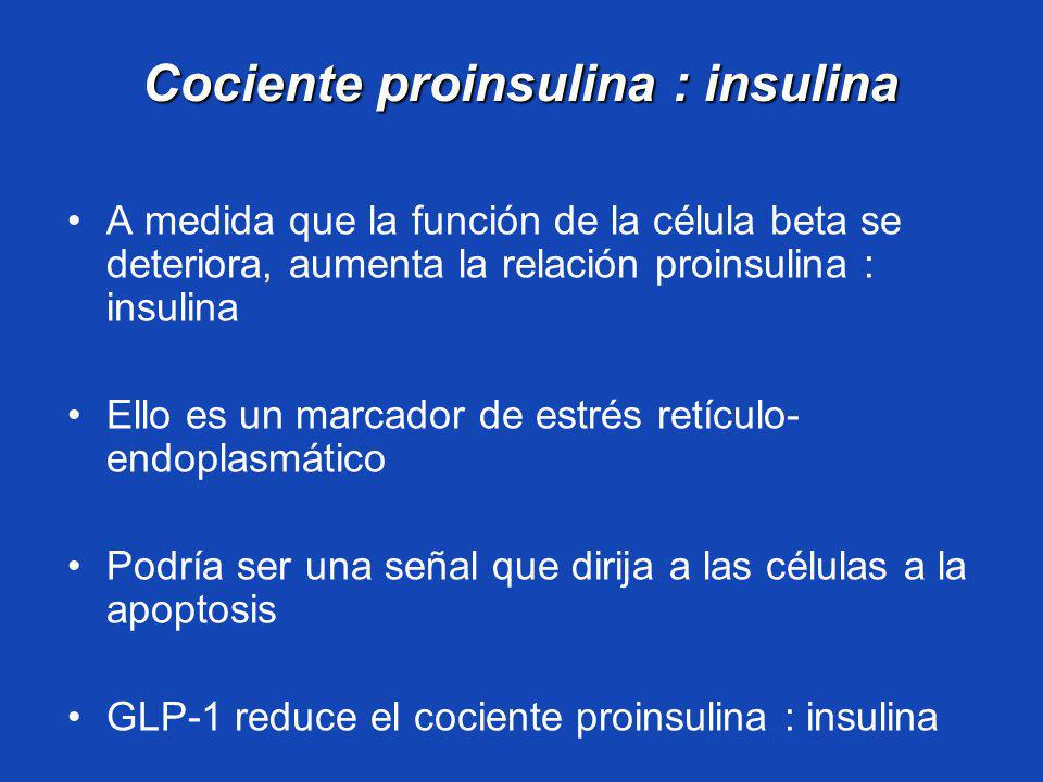 Cociente proinsulina : insulina A medida que la función de la célula beta se deteriora, aumenta la relación proinsulina : insulina Ello es un marcador