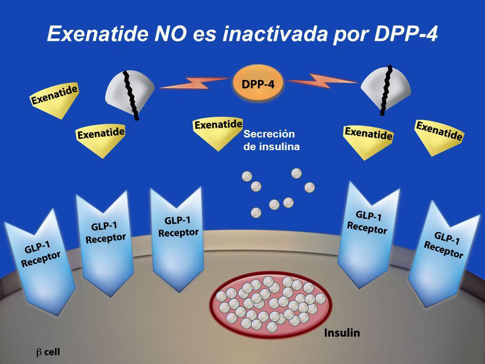 Exenatide NO es inactivada por DPP-4 Secreción de insulina