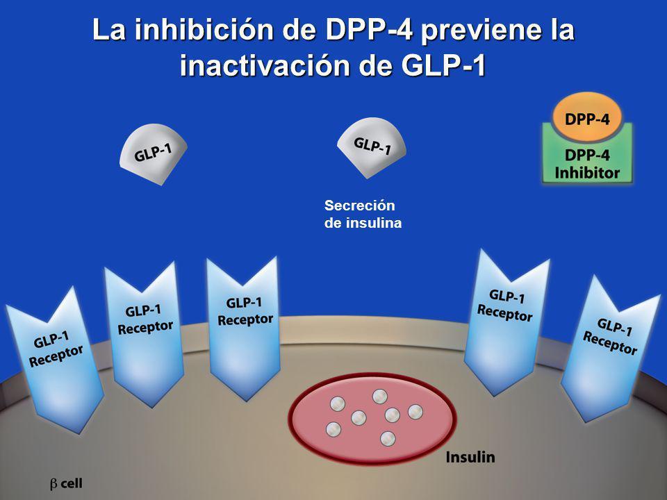 La inhibición de DPP-4 previene la inactivación de GLP-1 Secreción de insulina