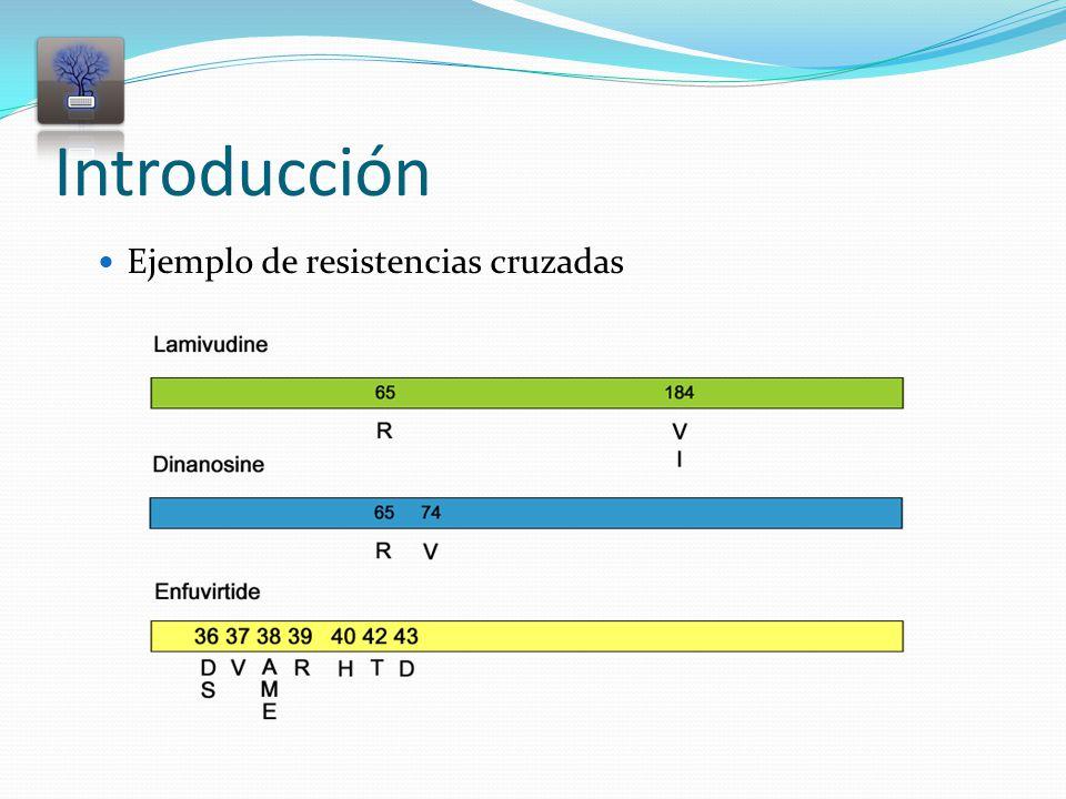 Introducción Ejemplo de resistencias cruzadas