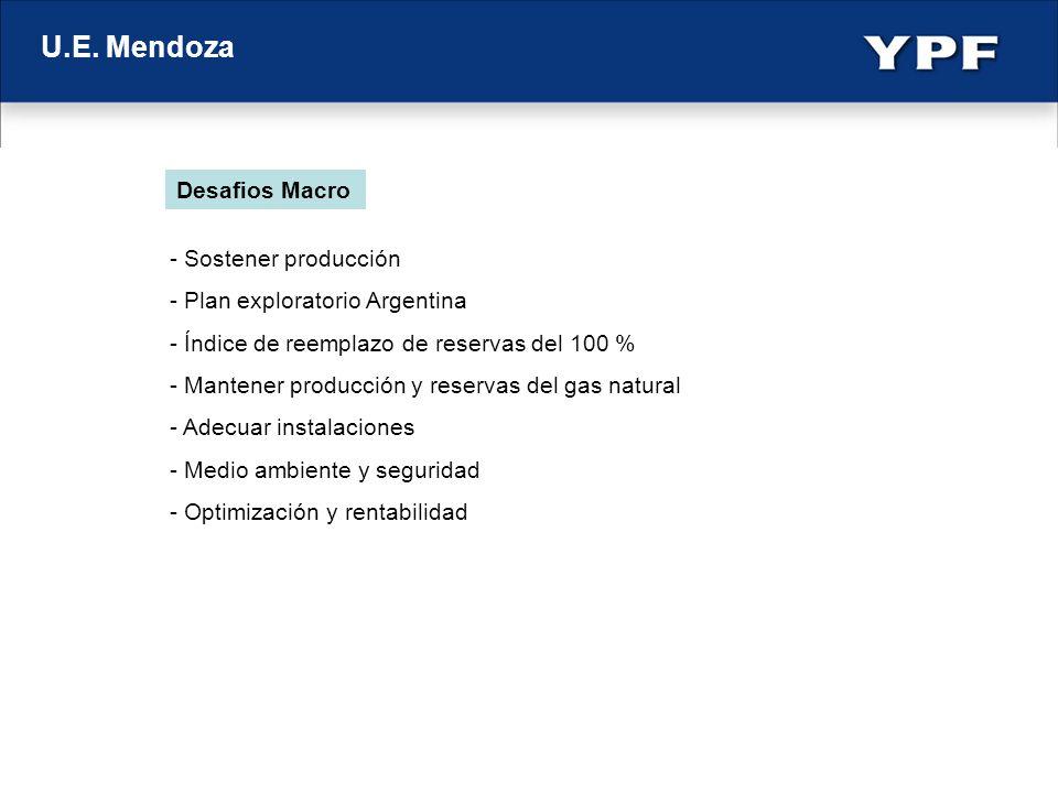 U.E. Mendoza - Sostener producción - Plan exploratorio Argentina - Índice de reemplazo de reservas del 100 % - Mantener producción y reservas del gas