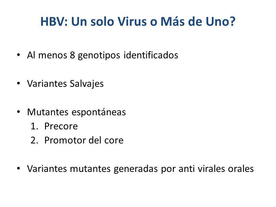 HBV: Un solo Virus o Más de Uno? Al menos 8 genotipos identificados Variantes Salvajes Mutantes espontáneas 1.Precore 2.Promotor del core Variantes mu