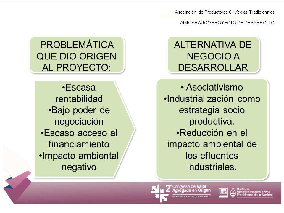 Asociación de Productores Olivícolas Tradicionales AIMOARAUCO PROYECTO DE DESARROLLO Escasa rentabilidad Bajo poder de negociación Escaso acceso al fi