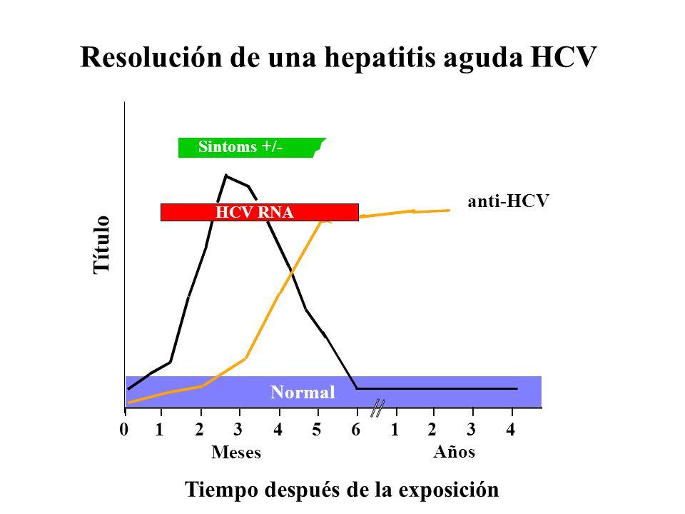 Resolución de una hepatitis aguda HCV Sintoms +/- Tiempo después de la exposición Título anti-HCV ALT Normal 012345 61234 Años Meses HCV RNA