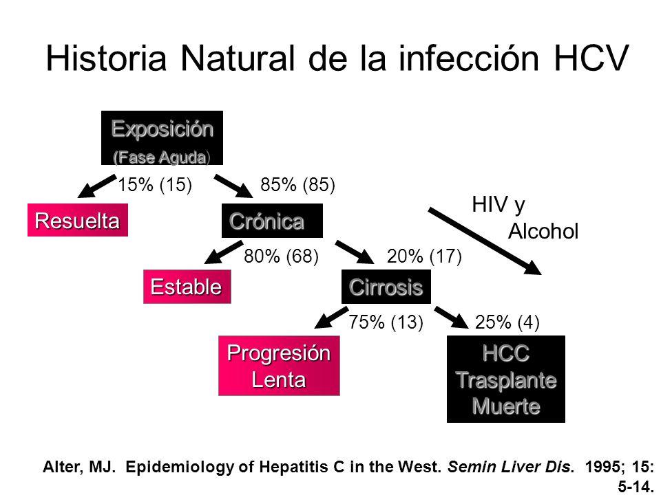 Historia Natural de la infección HCV Exposición (Fase Aguda (Fase Aguda) Resuelta Crónica CirrosisEstable ProgresiónLentaHCCTrasplanteMuerte 20% (17)
