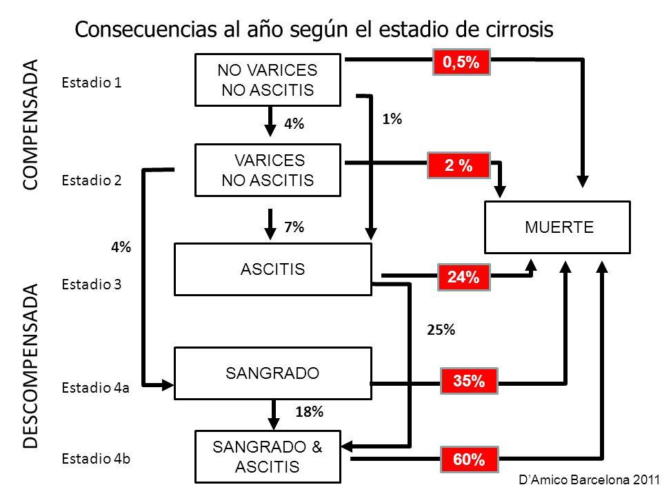 NO VARICES NO ASCITIS VARICES NO ASCITIS SANGRADO & ASCITIS COMPENSADA DESCOMPENSADA Estadio 1 Estadio 2 Estadio 3 Estadio 4a MUERTE 0,5% 2 % 24% 60%