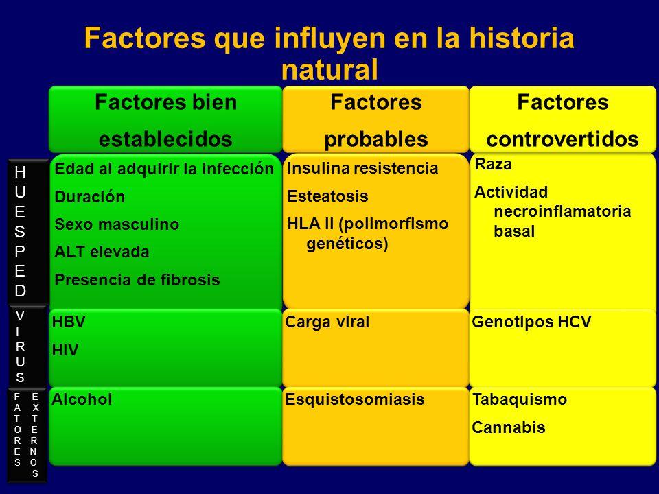 Raza Actividad necroinflamatoria basal Factores bien establecidos Edad al adquirir la infección Duración Sexo masculino ALT elevada Presencia de fibro