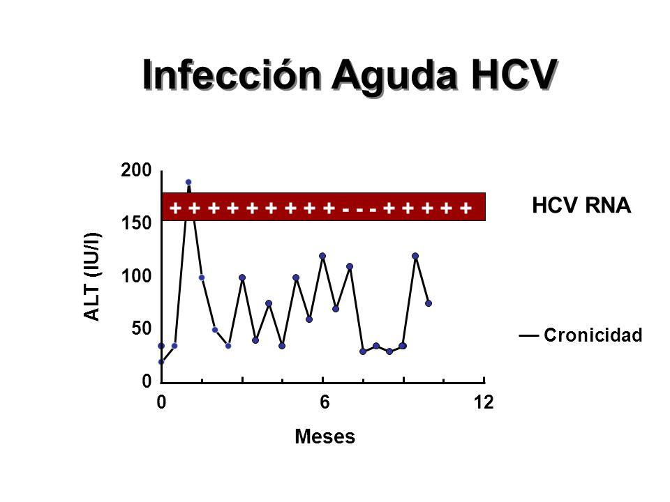 0 50 100 150 200 0612 Meses ALT (IU/l) Cronicidad + + + + + + + + + - - - + + + + + Infección Aguda HCV HCV RNA