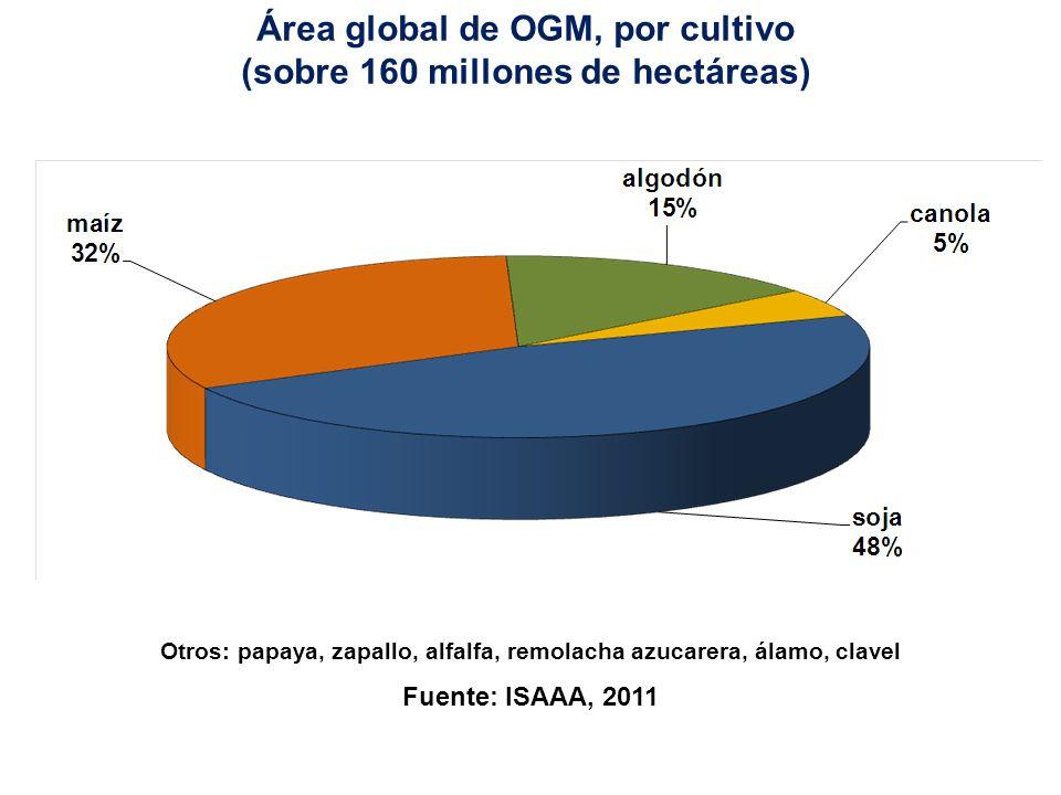 Área global de OGM, por característica (sobre 160 millones de hectáreas) TH: tolerante a herbicida, Bt: resistente a insectos También se sembraron superficies pequeñas de cultivos con resistencia a virus y clavel azul.
