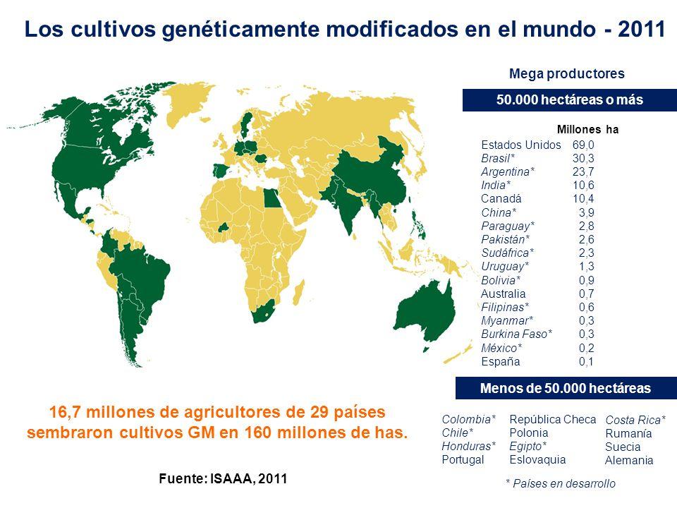 0,1 Fuente: ISAAA, 2011 Los cultivos genéticamente modificados en el mundo - 2011 Mega productores 50.000 hectáreas o más Estados Unidos Brasil* Argen