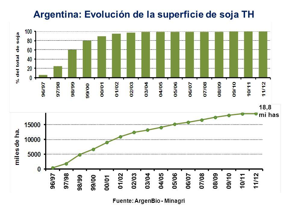 Fuente: ArgenBio - Minagri Argentina: Evolución de la superficie de maíz Bt, TH y Bt X TH