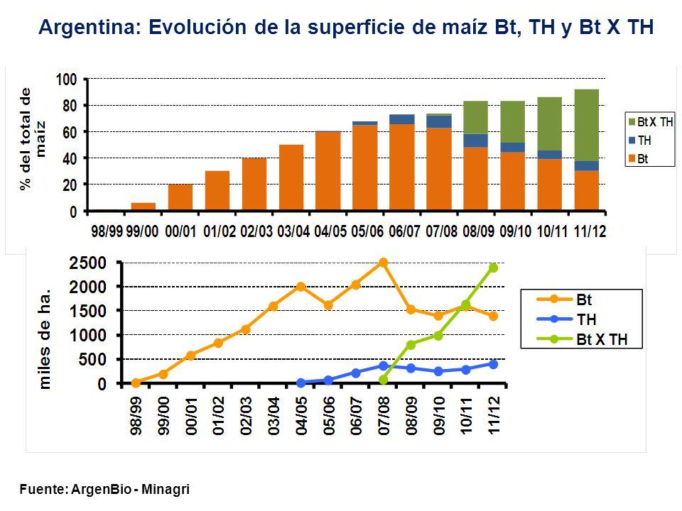 Fuente: ArgenBio - Minagri Argentina: Evolución de la superficie de algodón Bt, TH y Bt X TH