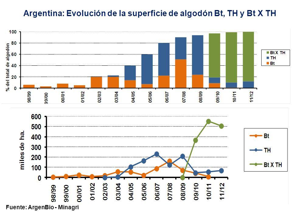 Argentina: Evolución de la superficie cultivada con OGM (en miles de hectáreas) Fuente: ArgenBio Soja THMaíz BtMaíz THMaíz Bt X TH Algodón Bt Algodón TH Algodón Bt X TH Total 96/97370--- --- 97/981.756---- -- 98/994.80013--5--4.818 99/006.640192--12--6.844 00/019.000580--25--9.605 01/0210.925840--10--11.775 02/0312.4461.120--200,6-13.586 03/0413.2301.600--587-14.854 04/0514.0582.00814,5-55105-16.241 05/0615.2001.62570-22,5165-17.082 06/0715.8402.046217-88232-18.423 07/0816.6002.50936982162,3124-19.846 08/0917.0001.53632080072210-19.938 09/1018.1821.40825699242,34736721.294 10/1118.7001.5992871.6407,755,9552,322.842 11/1218.8001.4004002.400-6950623.575