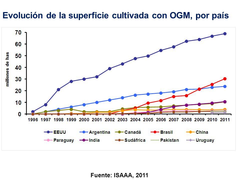 Área global de OGM, por cultivo (sobre 160 millones de hectáreas) Otros: papaya, zapallo, alfalfa, remolacha azucarera, álamo, clavel Fuente: ISAAA, 2011