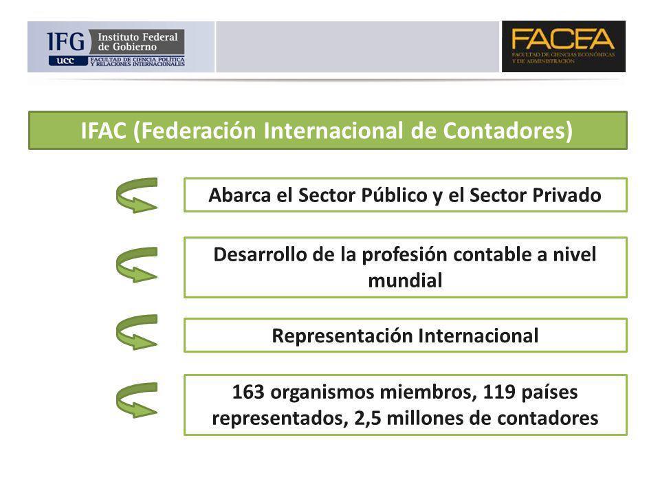 IFAC (Federación Internacional de Contadores) Abarca el Sector Público y el Sector Privado Desarrollo de la profesión contable a nivel mundial Represe