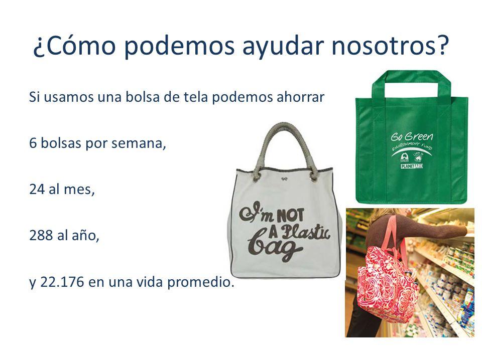 ¿Cómo podemos ayudar nosotros? Si usamos una bolsa de tela podemos ahorrar 6 bolsas por semana, 24 al mes, 288 al año, y 22.176 en una vida promedio.