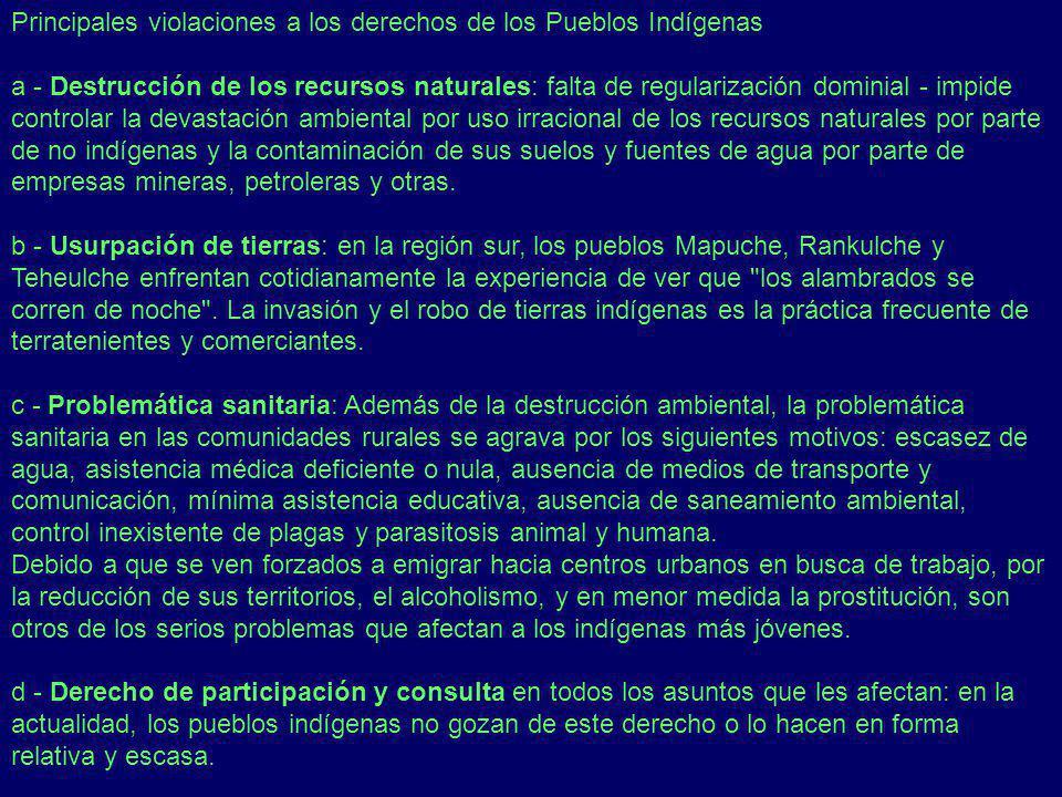 Principales violaciones a los derechos de los Pueblos Indígenas a - Destrucción de los recursos naturales: falta de regularización dominial - impide c