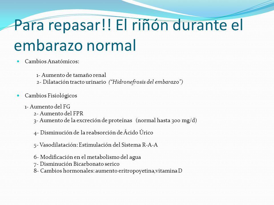 Para repasar!! El riñón durante el embarazo normal Cambios Anatómicos: 1- Aumento de tamaño renal 2- Dilatación tracto urinario (Hidronefrosis del emb